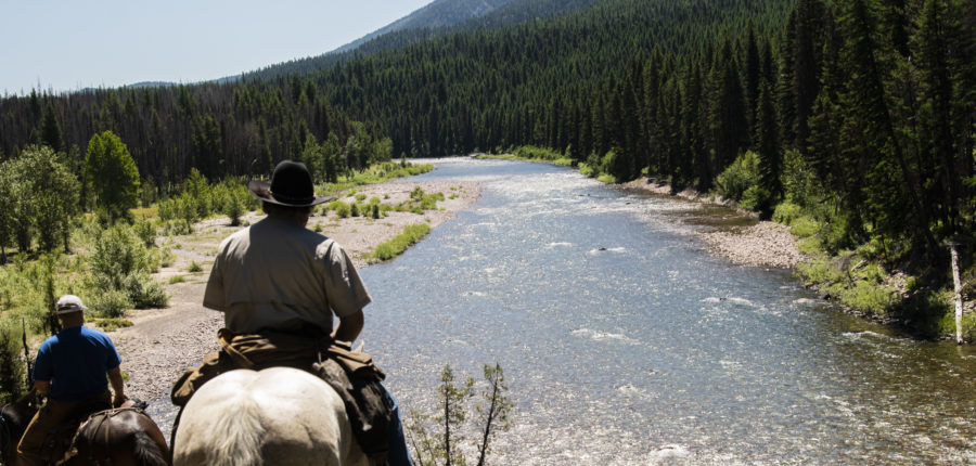 South Fork Flathead River Horseback Fly Fishing