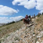 Roving Bob Marshall Wilderness pack trip at Salmon Forks