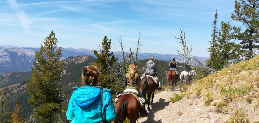 Roving Pack Trips in the Bob Marshall Wilderness