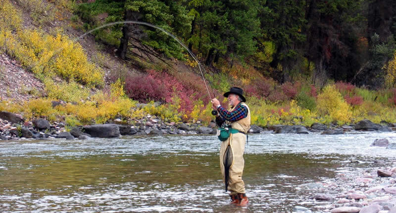 Wilderness Fly Fishing Trips